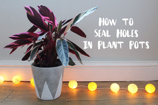 How to Seal Drainage Holes in Plant Pots