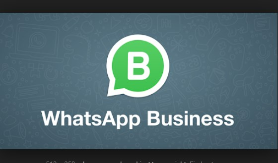 WhatsApp Business Free Download on Android App