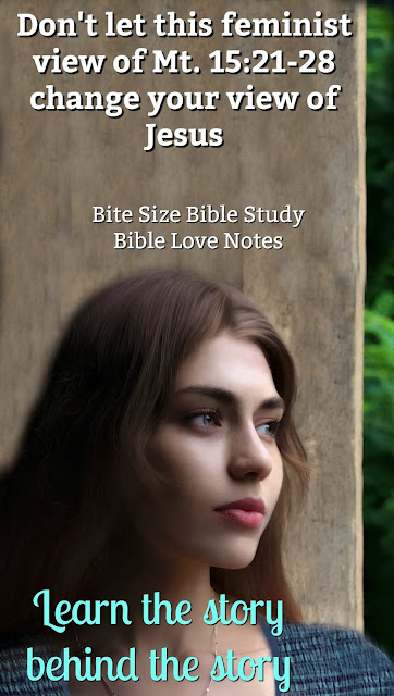 Matthew 15:21-28 can be a difficult passage to understand. This short Bible study allows us to look between the lines and see a most wonderful message. #BibleStudy #Bible #BiteSizeBibleStudy