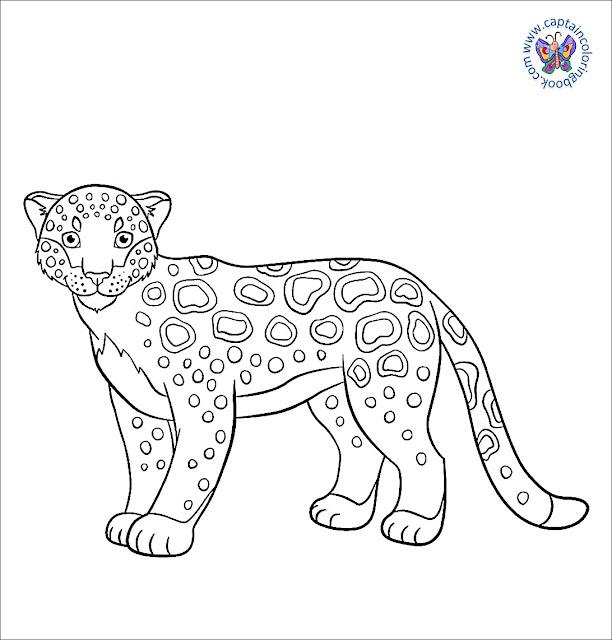 Coloring Book Pdf Download