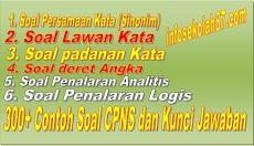 300+ Contoh Soal Dan Kunci Jawaban CPNS Tes Intelegensi Umum (TKDTIU)