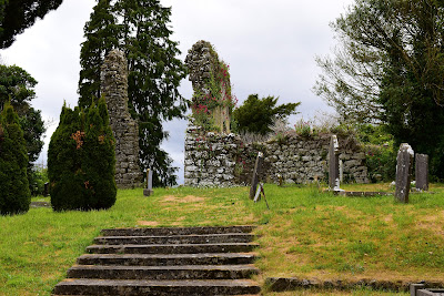 Saint Fintans Well, Cromogue, Laois.