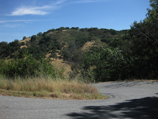 Tight switchback on Reynolds Road, Los Gatos, California