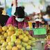 Seremi de agricultura entrega balance sobre situación de abastecimiento en la región