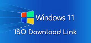Windows 11 ISO Download Link