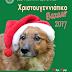 Το Χριστουγεννιάτικο Μπαζάρ των Αδέσποτων Βριλησσίων...