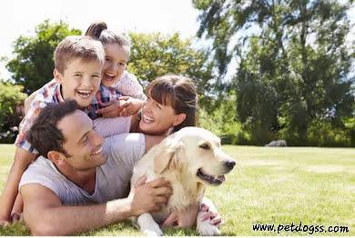 Benefits of Dog Breeding