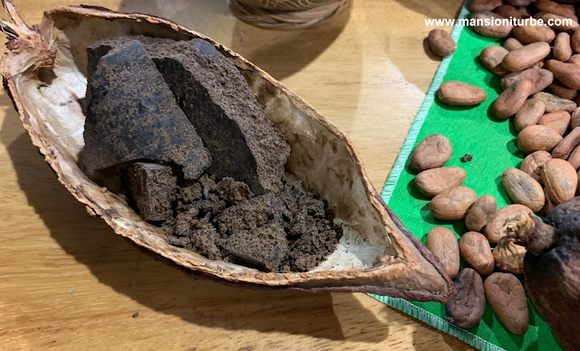 Artisan Cocholate and Mexican Cacao