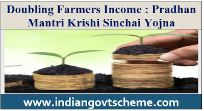 Doubling Farmers Income