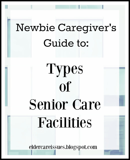 Types of elder care facilities