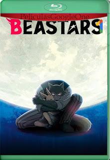 Beastars (2019) 1 Temporada [NF] [1080p Web-Dl] [Latino-Inglés] [LaPipiotaHD]
