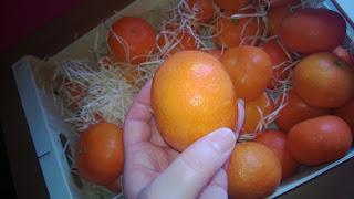 Die Mandarinen haben eine tolle größe