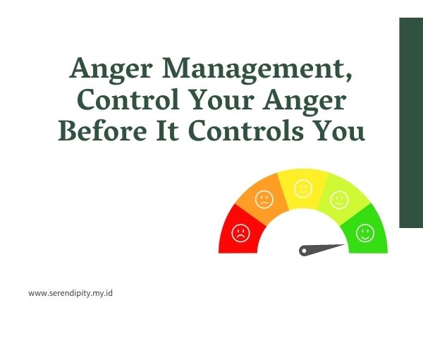 "Review Webinar ""Anger Management, Control Your  Anger Before It Controls You"" Bersama Dandiah Care Center"