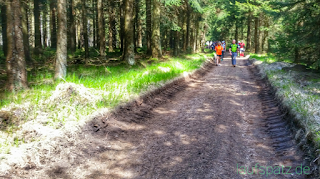 Rennsteiglauf Supermarathon Weg zum Beerberg
