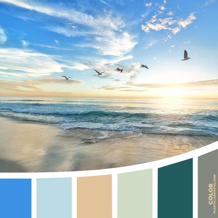 color_574