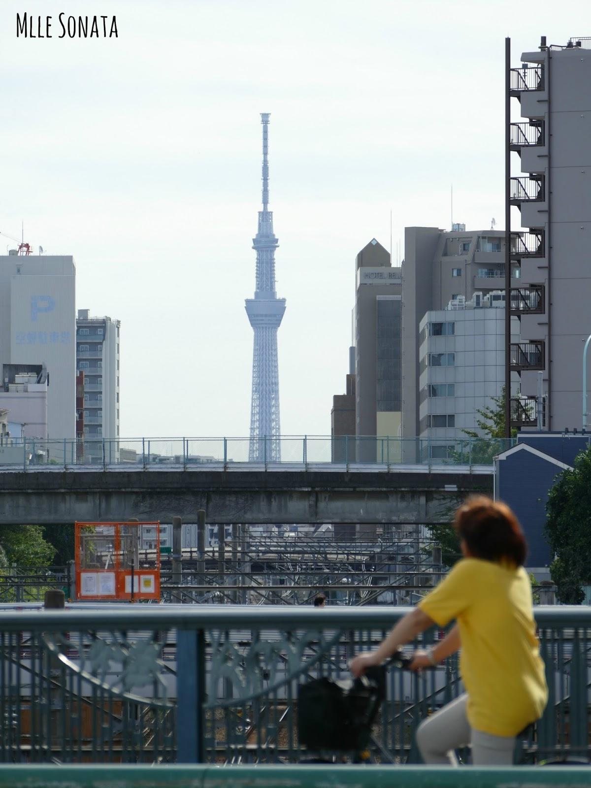 Quartier de Ikebukuro avec au loin la Tokyo Skytree. C'est marrant de l'apercevoir d'ici car si on regarde la carte, elle se trouve assez loin du quartier de Ikebukuro.