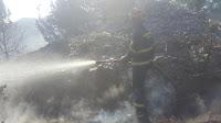 požar Povlja - Vela Njiva slike otok Brač Online
