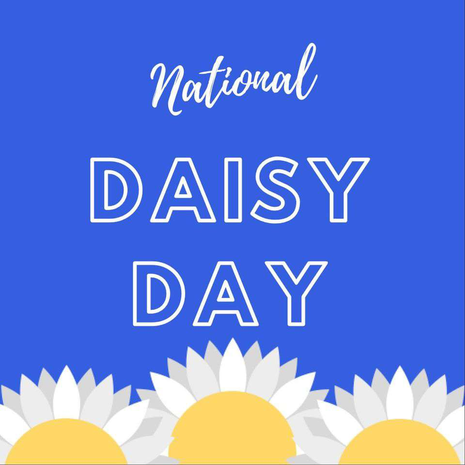 National Daisy Day Wishes pics free download