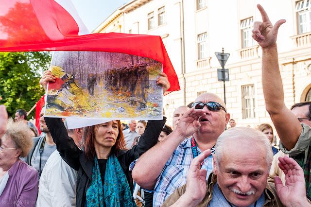 Stop upartyjnianiu Wawelu, obywatele RP, demonstracja