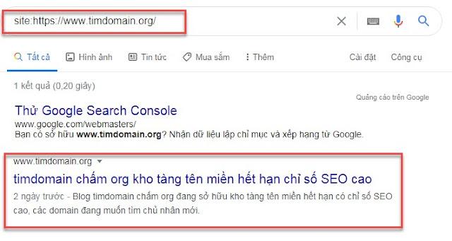 Kiểm tra google index website