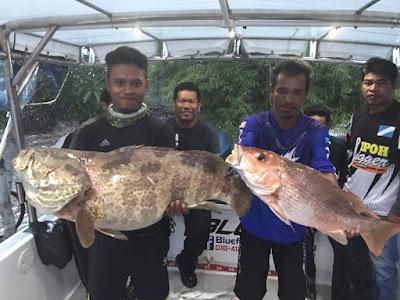 Tekong Ngap-Ngap Anglers || Adni Suite Homestay Seri Manjung Lumut