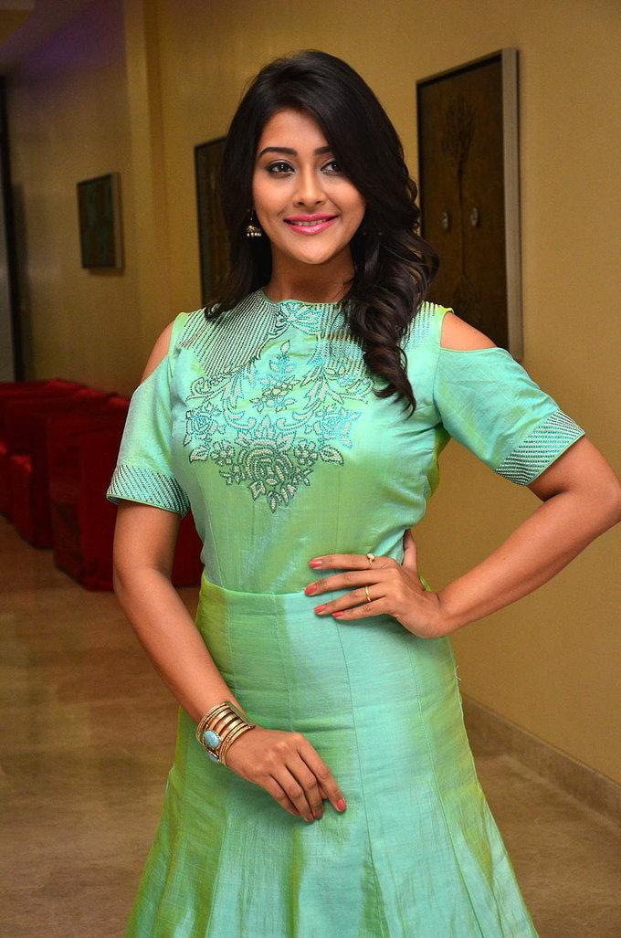 Telugu Actress Pooja Jhaveri At Kalamandir Anniversary In Green Dress