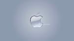 Bumper Video Apple
