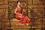 shriya saran cmr shopping mall ad-thumbnail-5