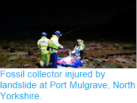 https://sciencythoughts.blogspot.com/2018/10/fossil-collector-injured-by-landslide.html