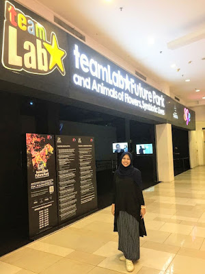 Team Lab Future Park Gandaria City
