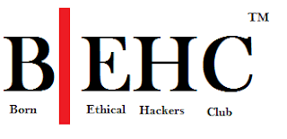 Born Ethical hackers