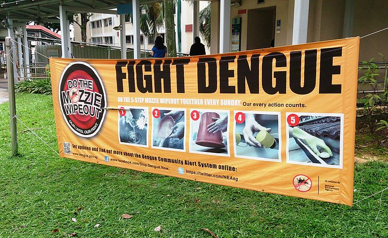 Citizen Journalist: More than 2000 dengue cases reported in Bengal