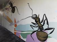 Wodonga Street Art | Kirrily Anderson