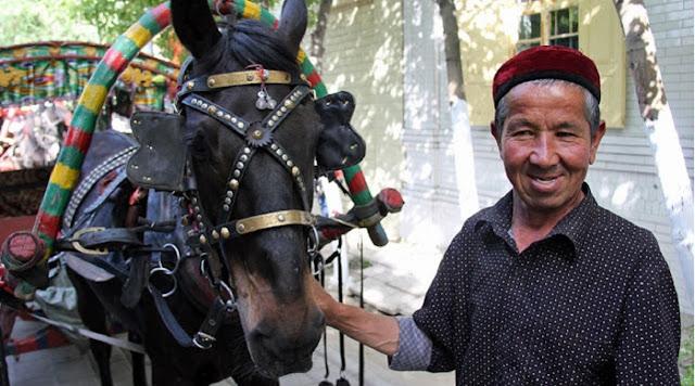 Muslim Uyghur Jual Sebelas Kudanya untuk China yang Terkena Corona, Terbuat dari Apa Hatinya?