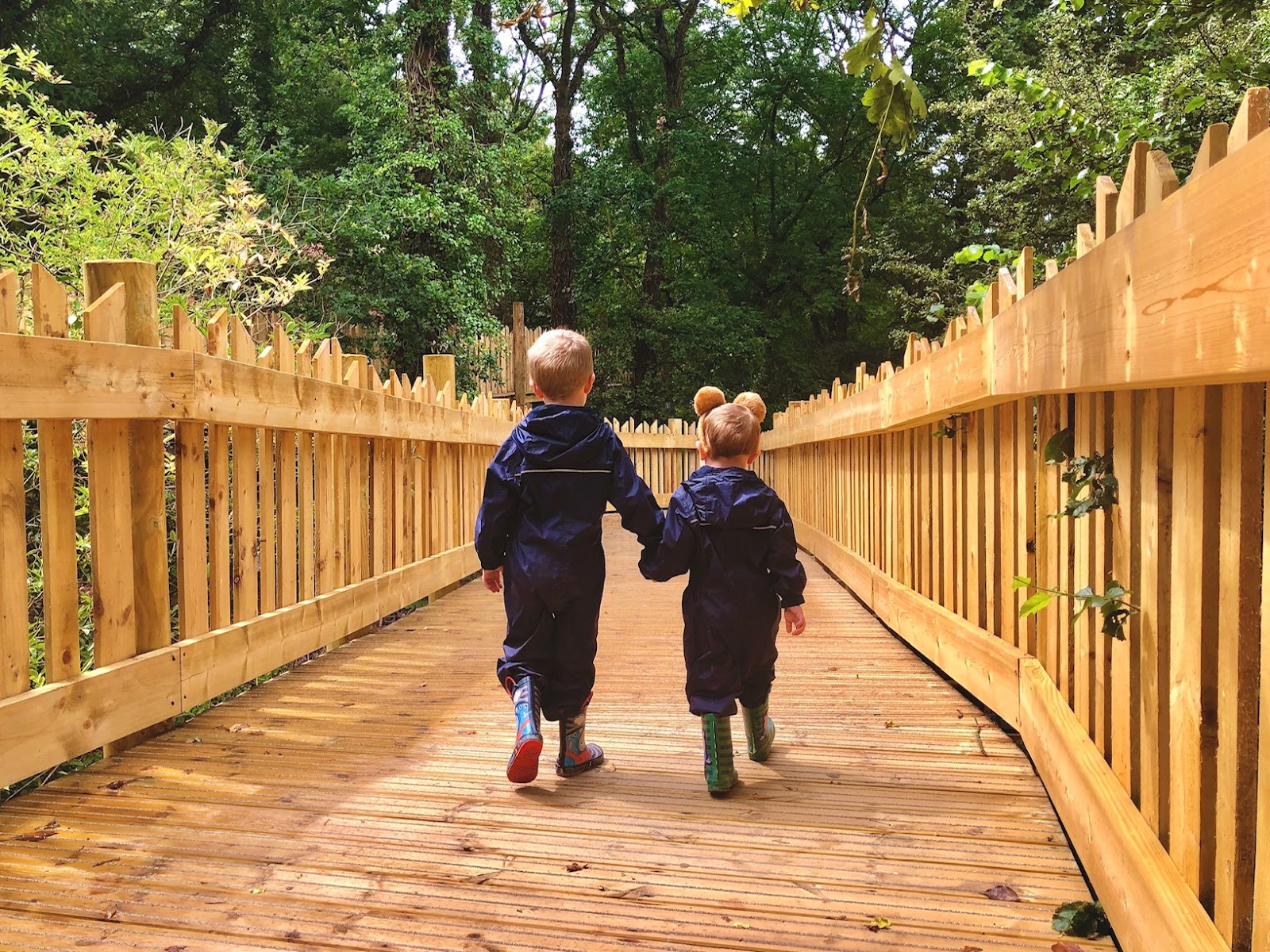 two young children in puddle suits and wellies walking along a wooden treetop walkway