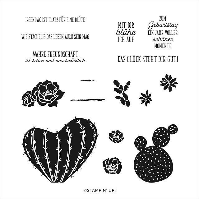 Stampin up Stempelset mit Kakteen und Texten