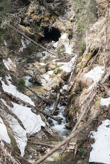 Szamos-bazárban barlang és farönkök hóval Pádison