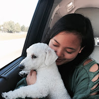 Lauren Banawa, May Moments of the Month, mini poodle, road trip