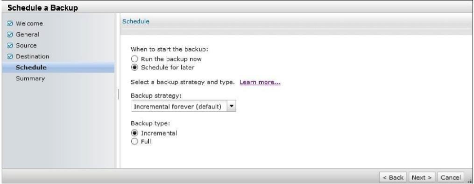How to backup VMware Virtual Machines (VMs) using TSM for VE
