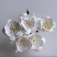 https://www.scrapek.pl/pl/p/Kwiat-wisni-Bialy-5szt./17704