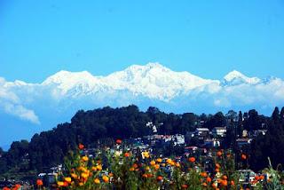 Darjeeling Saipatri