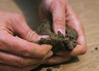 Clay soil is dirt...