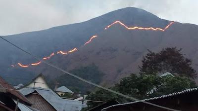 Bukit Anak Dara Sembalun Terbakar