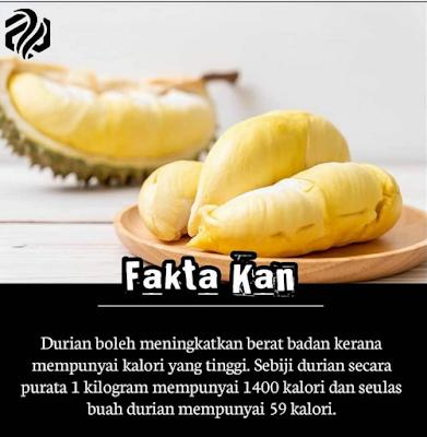 Durian Menggemukkan? Fakta Atau Auta?