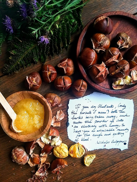 roasted chestnuts geanina grigore