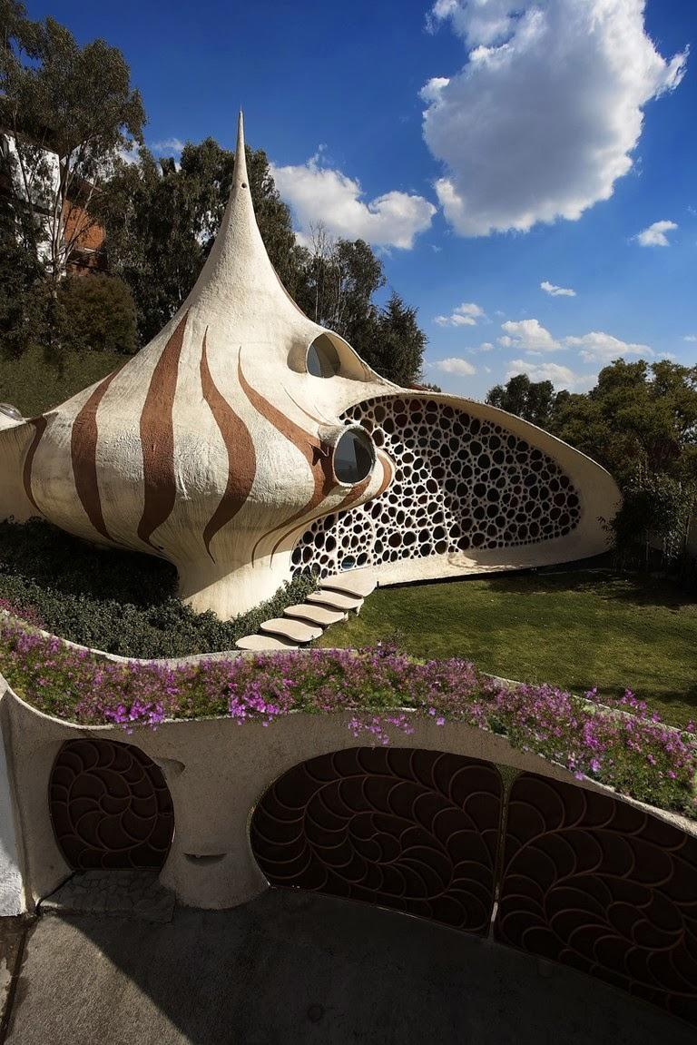 Design nautilus house by arquitectura organica for Nautilus garden designs