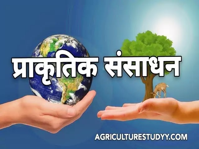 प्राकृतिक संसाधन ( Natural resources in hindi