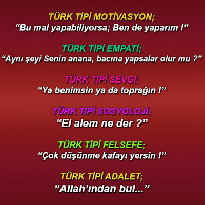 Hayata TÜRK TİPİ bakış, türk, motivasyon, empati, sevgi, sosyoloji, felsefe, adalet, atasözleri, özdeyişler, deyimler, nasihatler