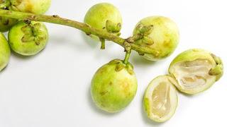 manfaat-buah-langsat-bagi-kesehatan,www.healthnote25.com