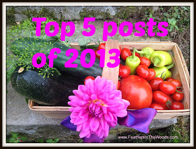 best blogs of 2013
